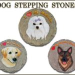Dog Stepping Stone