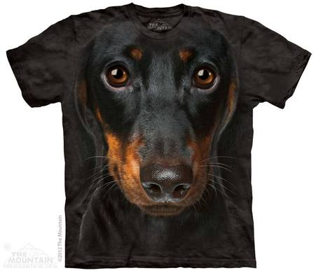 Dachshund Face Adult T-Shirt