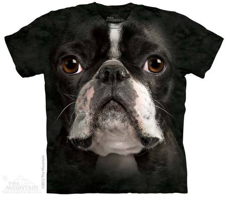 Boston Terrier Face Adult T-Shirt